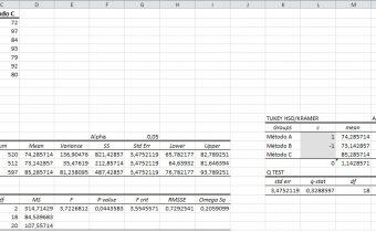 Curso Excel avanzado para Marriot Estepona