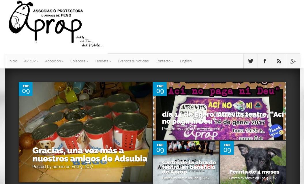 Web de Apropego. Diseño Web en España.