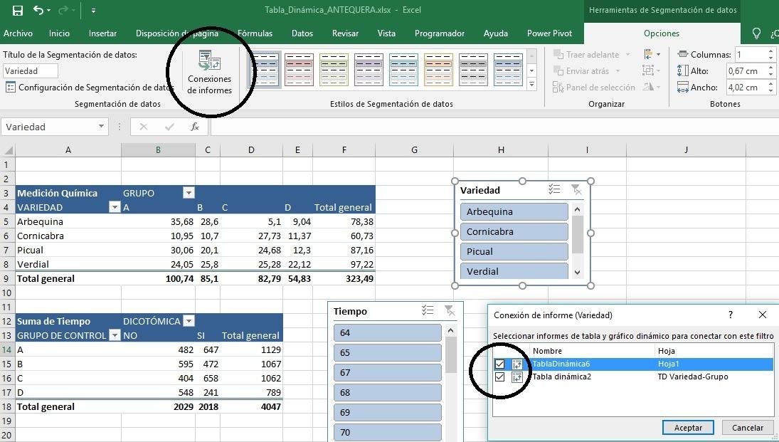 Conectar paneles de segmentación en Excel