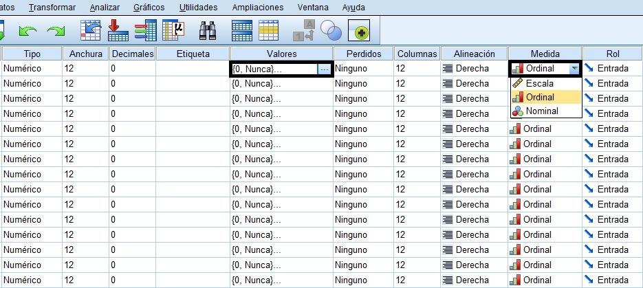Copiar formatos de valores y medidas de las variables en SPSS