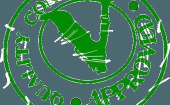Regresión Logística Binaria con Minitab