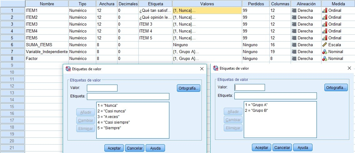 definir vista de variables en Spss