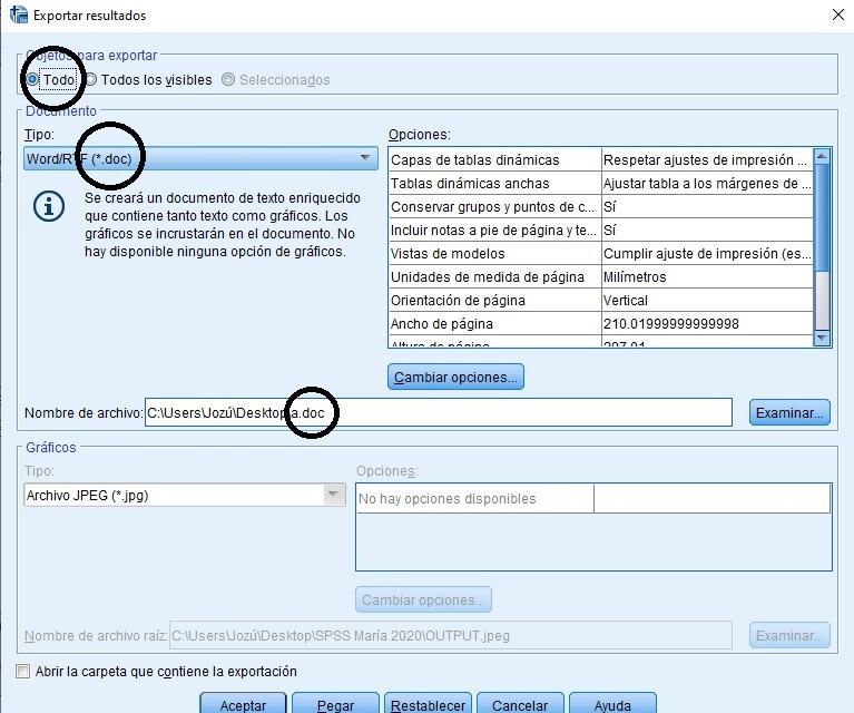 Exportar resultados SPSS a .doc