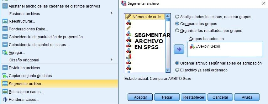 Segmentar archivos en SPSS