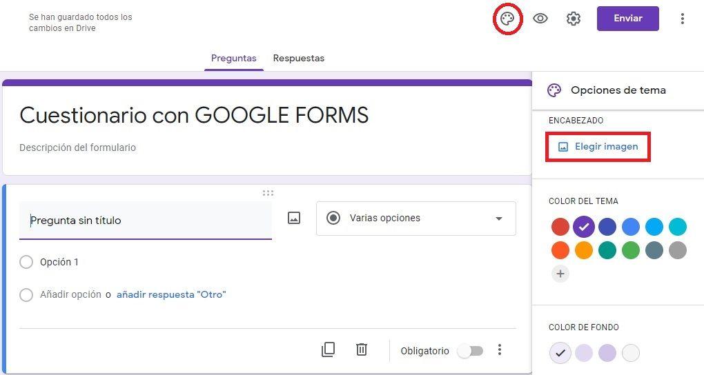 Opciones de Tema en cuestionarios de Google
